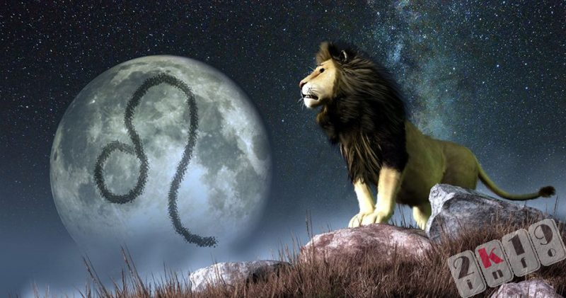 Гороскоп на 2019 год для Льва: характеристика знака