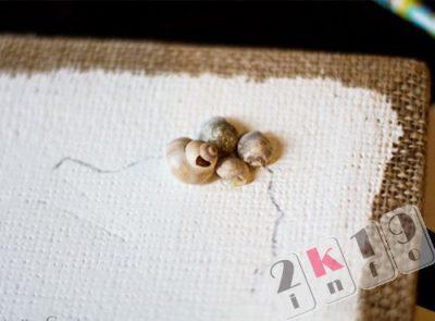 Оригинальные поделки из морских ракушек своими руками