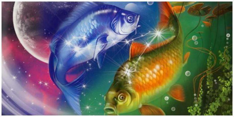 Гороскоп на 2019 год для Рыб: годовой прогноз знака