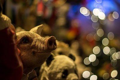 Картинки для рабочего стола ПК со Свинкой на Новый 2019 год